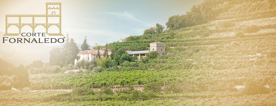 Weingut Corte Fornaledo